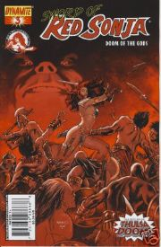 Red Sonja Doom of the Gods #3 Renaud Cover A